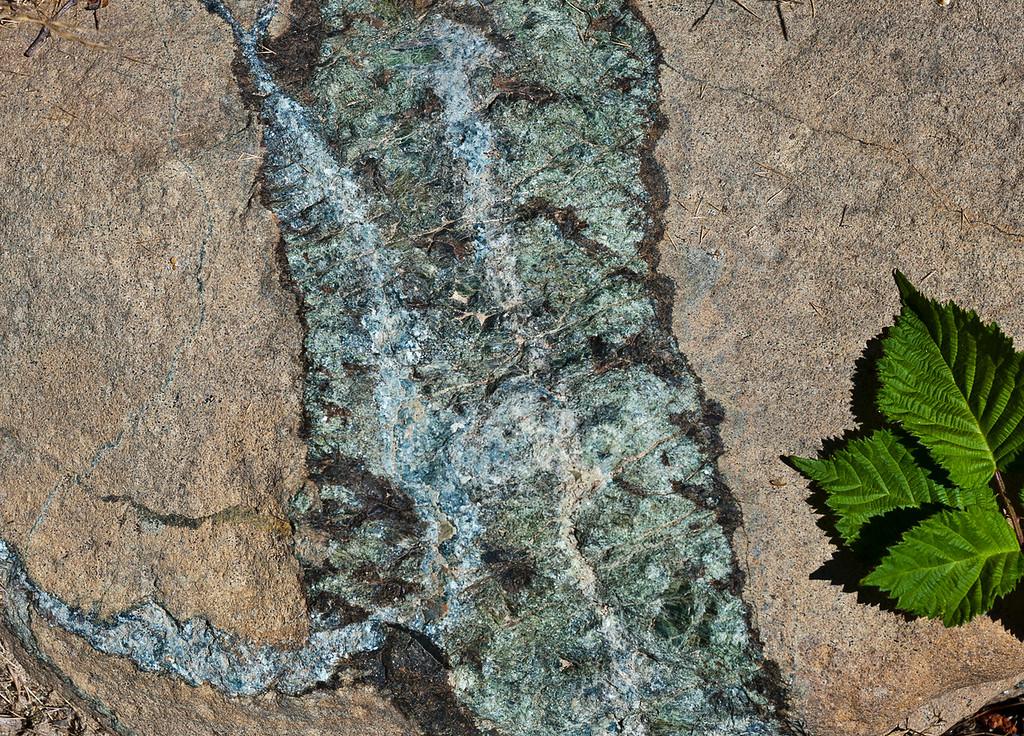 Peridotite, with pyroxenite vein, Klamath Mountains, Northern California.