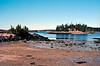 Acadia NP 3/15/11 F-1N - FD 35-105 3.5 - Ektar 100