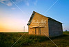 Farm Sunrise, Illinois - July 2011<br /> <br /> An old barn stands in stark contrast to the windmills in the background