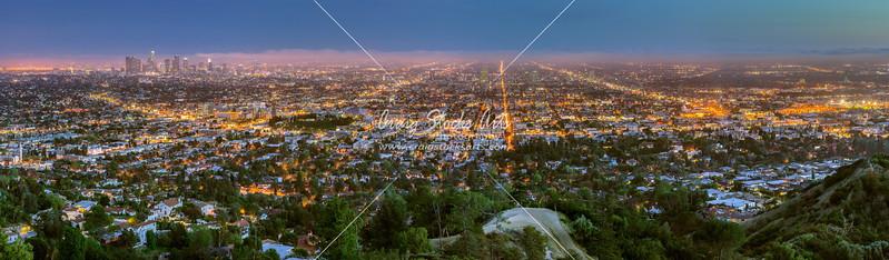 Downtown LA - 8 X 20