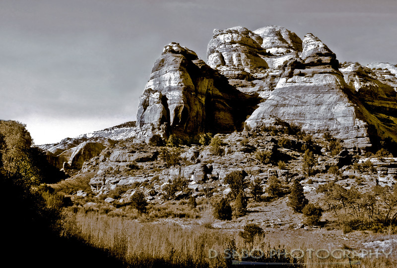Lower Calf Creek Trail