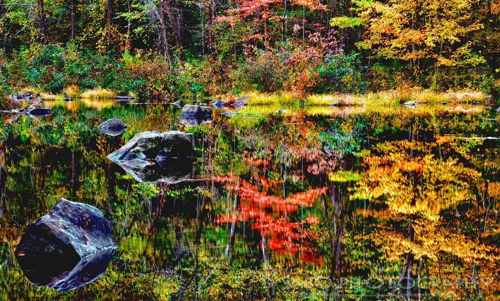 Meadow Pond