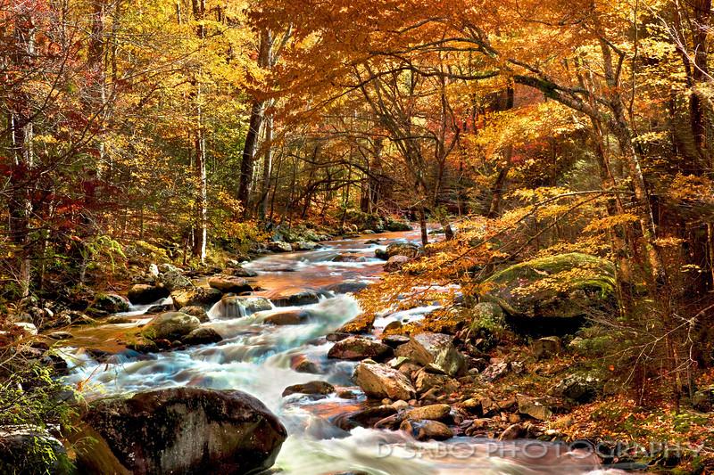 Smoky Autumn Gold