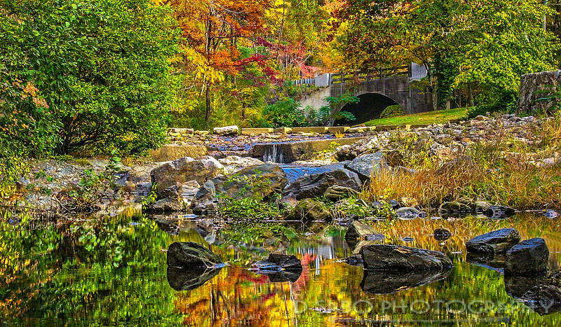 Autumn in Hot Springs