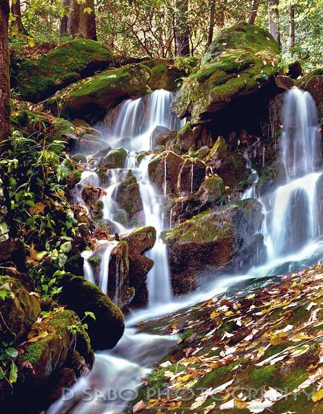 Smoky Fern Grotto Waterfall