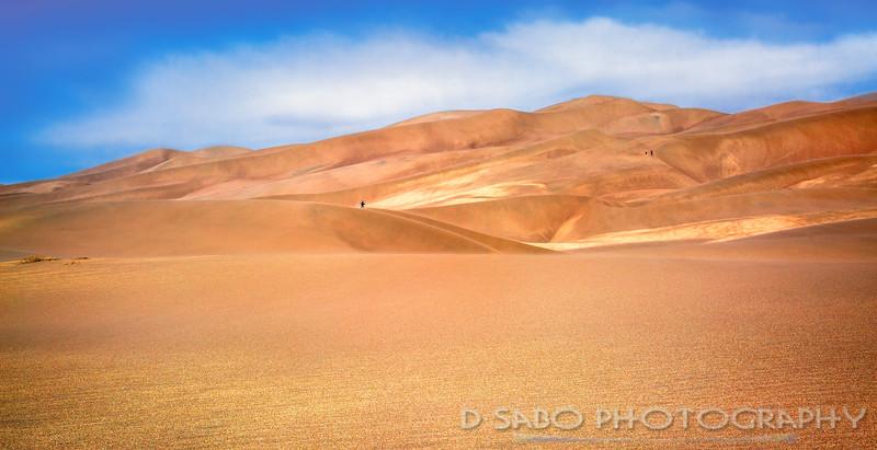 A Sandy Journey
