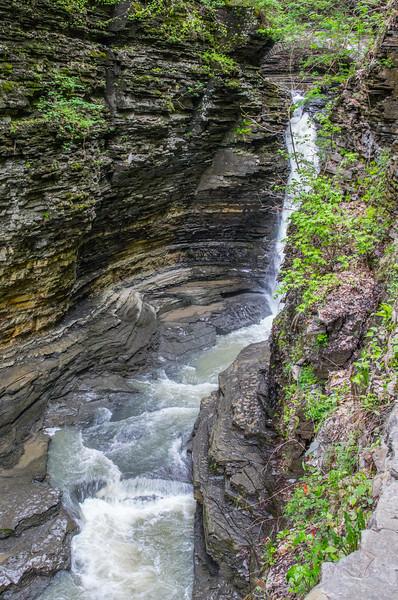 gorge trail at Watkins Glen state park