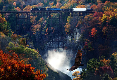 Letchworth trestle and turkey vulture flies by