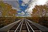 train tracks over the trestle Finger lakes