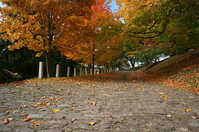 Stone road at Mount Hope Cemetery Rochester.