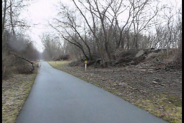 I saw five deer along the Canal Path by the airport today 3.21.11.  Real treat! First one is very brave and has seen me before.  The others by the Holiday Inn are shy and not sure what I am.