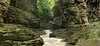 Watkins Glen step falls pan Finger Lakes