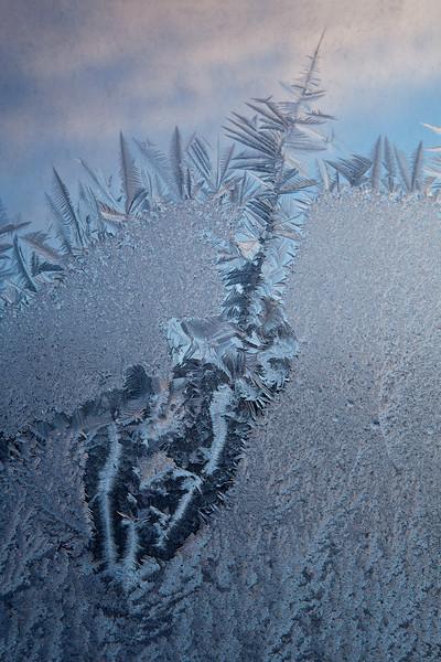 Angel Ice painting shortly after sunrise Hoarfrost Finger Lakes