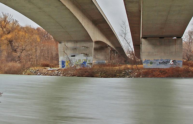 Under Rt 390 Genesee River Over pass. Maximum Crop.