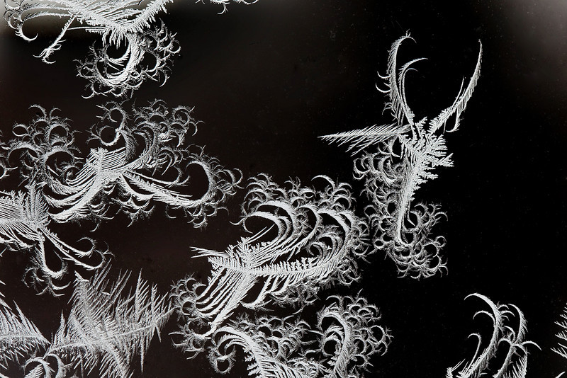 HoarFrost angel painting on the glass window, temperature today 5 degrees F. Awarded HM in 2010 NFRCC B&W print competition.