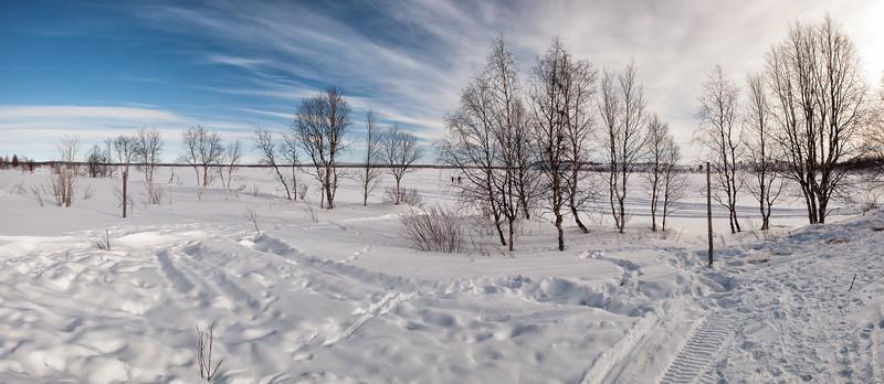 Pristine Palojärvi