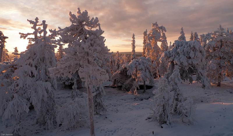 Finland, Rovaniemid, 30. Nov 2010