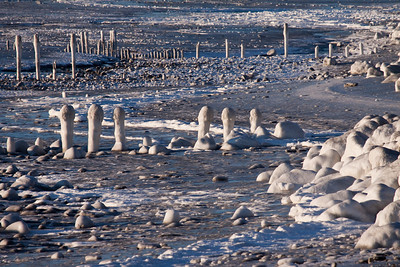 Frozen Pilings - IMG_0575