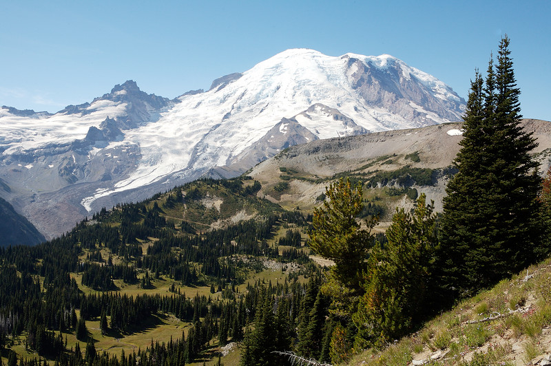 Mt Rainier from the Sourdough Ridge trail looking South