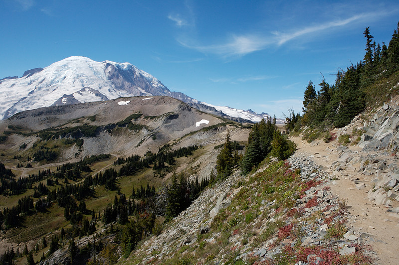 Mt Rainier from the Sourdough Ridge Trail looking southwest.