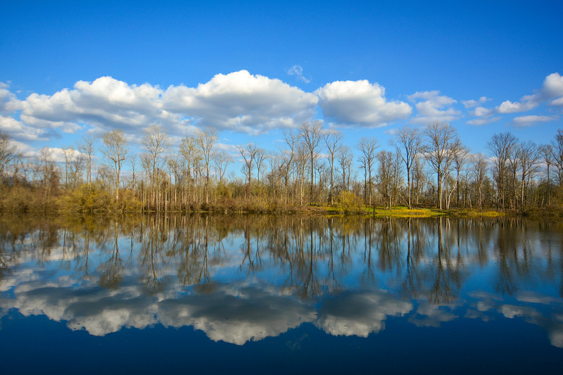"""Who is ready for Spring? This photo, taken last April, reflects a beautiful day at Archer Island (pun intended). Near Greenville, Mississippi. See more at  <a href=""""http://www.instagram.com/johnmontfort"""">http://www.instagram.com/johnmontfort</a>"""