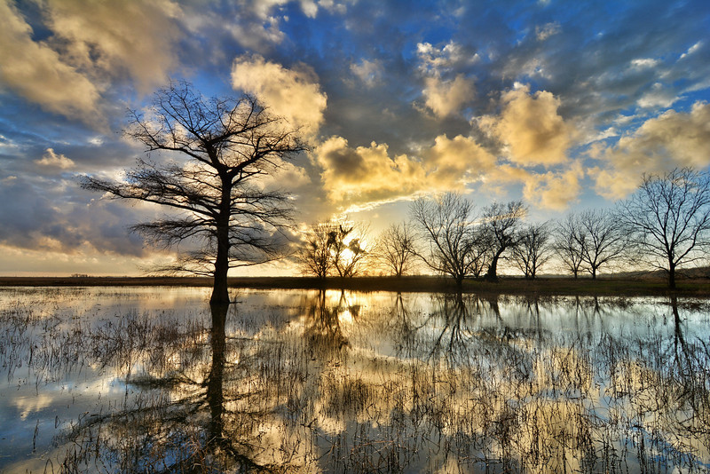 "Great sunset to end a rainy day in the Mississippi Delta - near Tribbett, MS (1/13/14). See more at  <a href=""http://www.instagram.com/johnmontfort"">http://www.instagram.com/johnmontfort</a>"