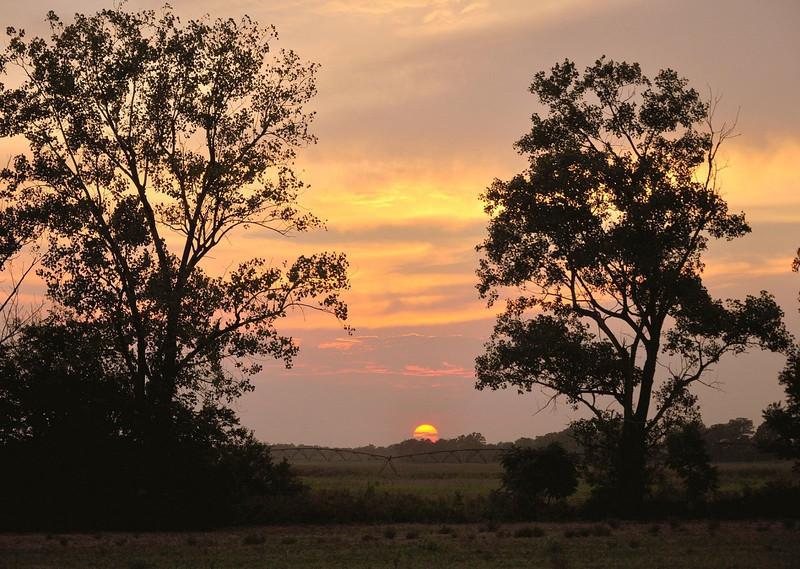 Sunset over a center pivot. Tribbett, MS