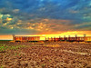 Mississippi Delta sunset over a cotton trailer cemetery - Benoit, Mississippi
