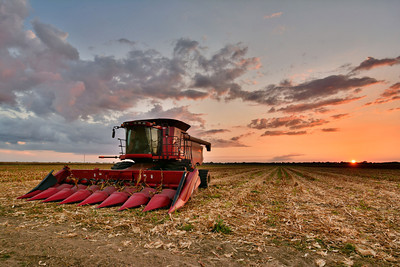 The corn in the Mississippi Delta is disappearing quickly! This Case IH 8120 on Smythe & Sons in Tribbett, Mississippi has done more than its fair share of work lately, and still has a way to go!