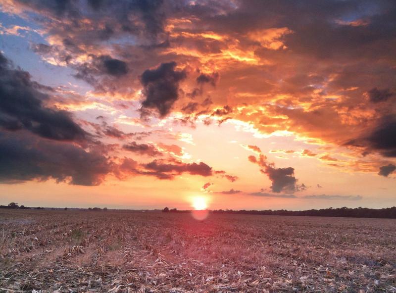 Cut Corn and Storm Clouds - Tribbett, Mississippi