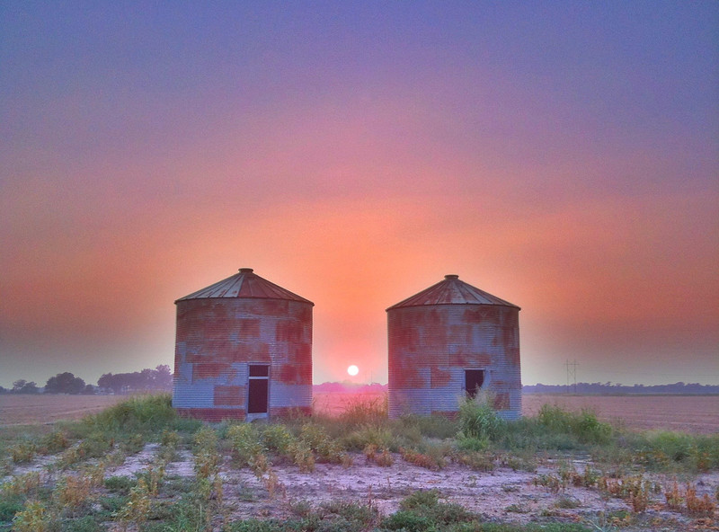 Twin Grain Bins - Tribbett, Mississippi