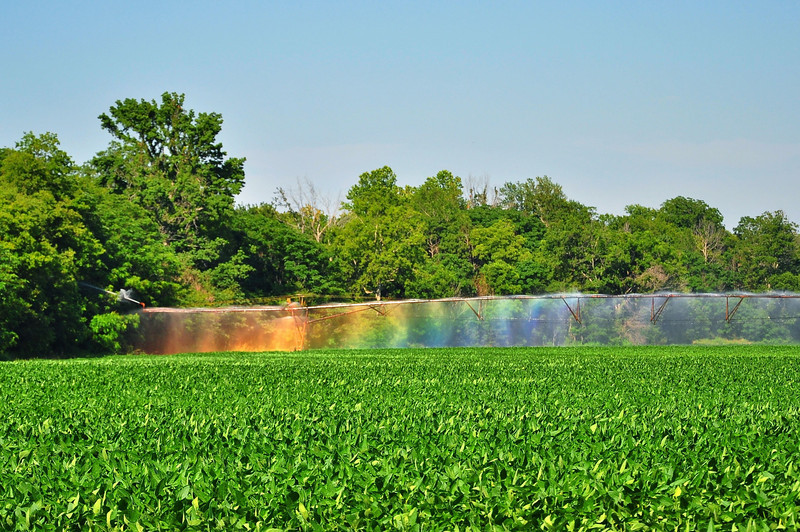 Here in the Delta, we make our own rainbows... - Tribbett, Mississippi