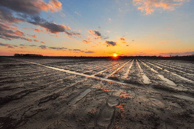 Its finally beginning to dry out! C'mon Spring! - taken in Bolivar County