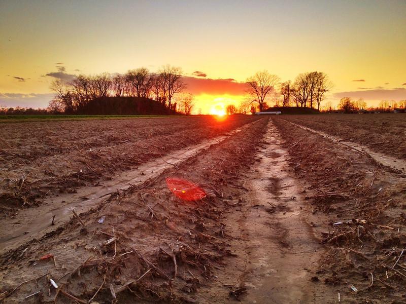 Indian Mounds - Elizabeth, Mississippi
