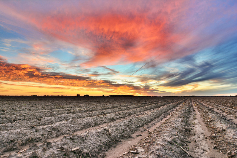 """One of many shots of yesterday's incredible sunset over on Bourbon Plantation - near Leland, Mississippi - See more at  <a href=""""http://www.instagram.com/johnmontfort"""">http://www.instagram.com/johnmontfort</a>"""