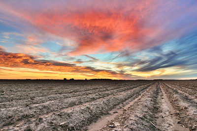 One of many shots of yesterday's incredible sunset over on Bourbon Plantation - near Leland, Mississippi - See more at www.instagram.com/johnmontfort