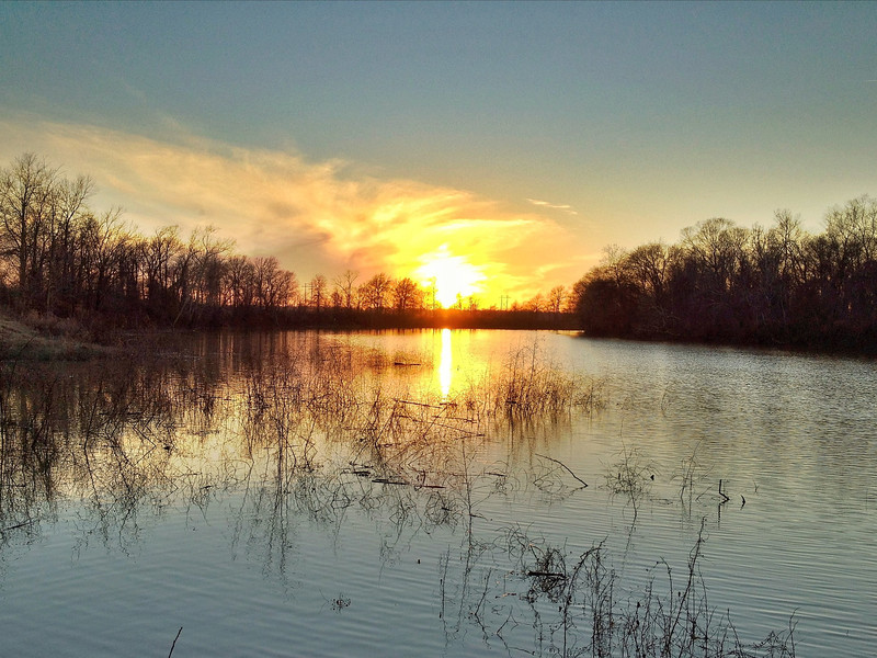 Yazoo River Oxbow - Greenwood, Mississippi
