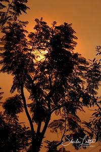 Fire Sun