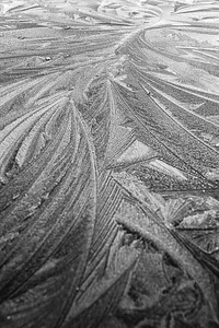 Frost on metal - intricate patterns adorn everything on our frigid Rockies mornings