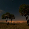 Full moon light on the fresh water marshes of Myakka River State Park near Sarasota, Florida