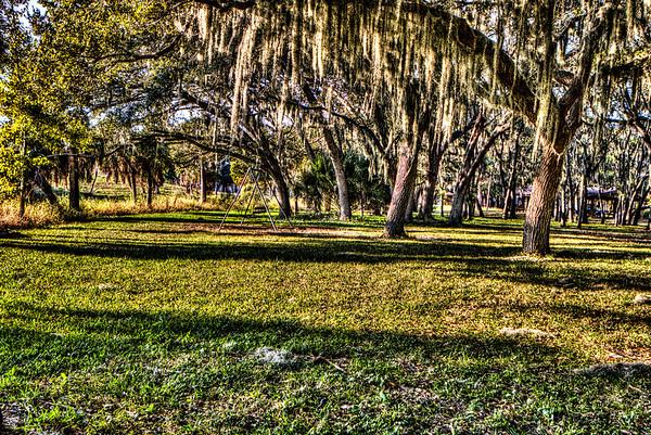 HDR Seminole Park 13-12-12
