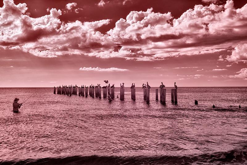 Beach fisherman, Naples, Florida