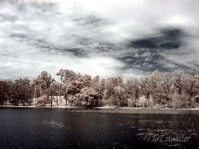 Alligator Lake, Lake City Florida Infrared.  Filter used Tiffen R72.