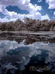 Alligator Lake, Lake City Florida Infrared.