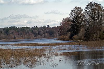 Alligator Lake, Lake City Florida
