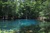 Manatee Springs State park, FL