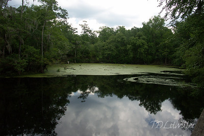 End of the line for the Sante Fe O'Leno State park