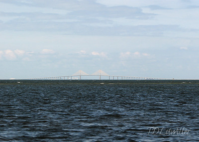 Robinson Preserve  Manatee County  Florida   Sunshine Skyway