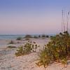Gasparilla Island sunrise