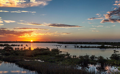 National Wildlife Refuge, Merritt Island, FL.